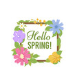 spring flowers background beautiful floral vector image vector image