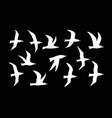 websea gulls silhouette set vector image