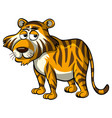 wild tiger with sleepy eyes vector image