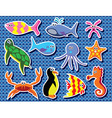 vector background of colorful sea animals vector image