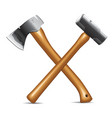 Hatchet and hammer vector image