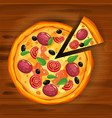 pizza and slice triangle with different vector image vector image