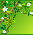 twisted wild lianas branches background jungle vector image