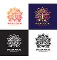 peacock set logo design vector image