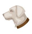 icon dog head vector image
