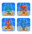 set of colorful corals and algae on a blue vector image