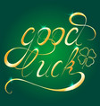written hand-drawn calligraphy design element for vector image