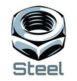 color with steel nut eps 10 vector image vector image