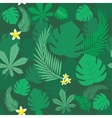 forest background vector image vector image