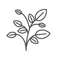 monochrome silhouette of plant with branches and vector image
