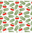 rowan berries and leaves pattern vector image vector image