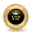 VIP Crown vector image vector image