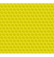 Yellow Pattern Hexagon Mosaic vector image vector image