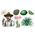agave fruits lemon and cactus farmer in a hat vector image vector image