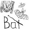 Bats black silhouettes vector image vector image