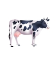 Cow Realistic vector image