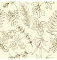 Herbs seamless pattern vector image
