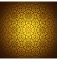 Lace pattern background with indian ornament vector image vector image