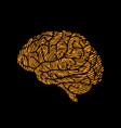 brain side view designed using line fingerprint vector image