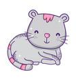 cute gray cat cartoon animal feline vector image vector image