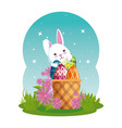cute rabbit with easter eggs painted in basket and vector image