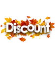 discount autumn banner with leaves vector image