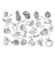 fruit stack sketch vector image vector image