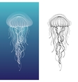 Jellyfish1 vector image vector image