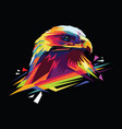 colorful eagle head vector image