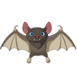 Halloween bat flying vector image