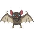 halloween flying vector image