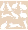 rabbit silhouettes on the white background vector image vector image