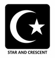 star and crescent vector image vector image