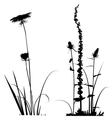 Black and white plants silhouettes vector image vector image