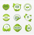 ecologic and healthy food set vector image vector image