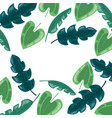 foliage leaves greenery herbs botanical background vector image vector image