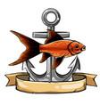 gold fish carassius auratus fresh water vector image vector image