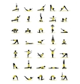 People practicing yoga poses for your design vector image