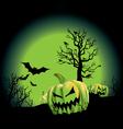 pumpkin patch vector image