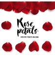 Realistic red rose petals set vector image