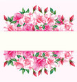 border roses design frame vector image