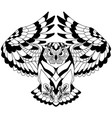 flying owl outline vector image vector image