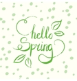 Hello spring tag ink lettering Modern vector image
