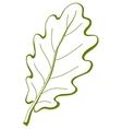 leaf of oak tree 3 pictograph