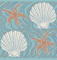 seashells and stars vector image