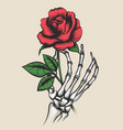 skeleton hand with rose tattoo style vector image vector image