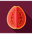 Guava flat icon Tropical fruit vector image