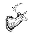 deer head trophy engraving vector image vector image