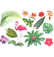 exotic watercolor tropical set vector image vector image