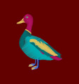 flat shading style icon wild duck vector image vector image
